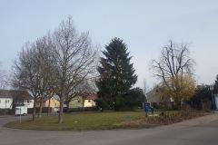 Bührerstraße, Schlösslesfeld